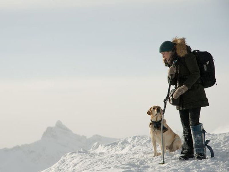 The Mountain Between Us: Kate Winslet in un'immagine del film
