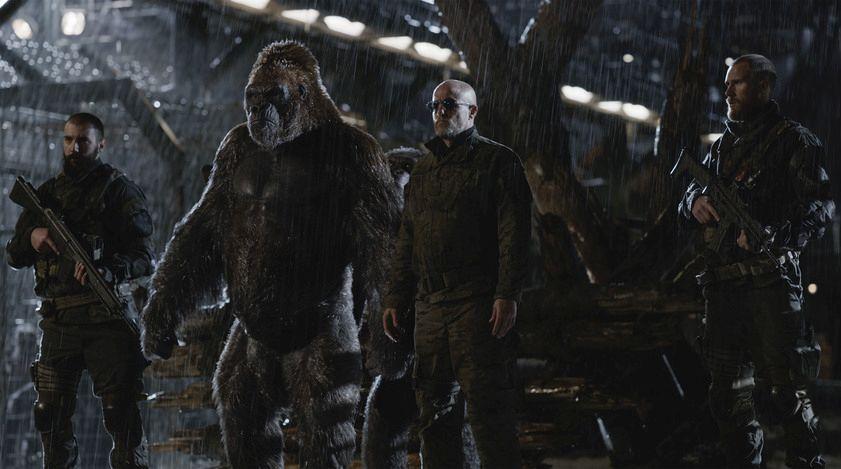 The War - Il pianeta delle scimmie: Woody Harrelson in un momento del film