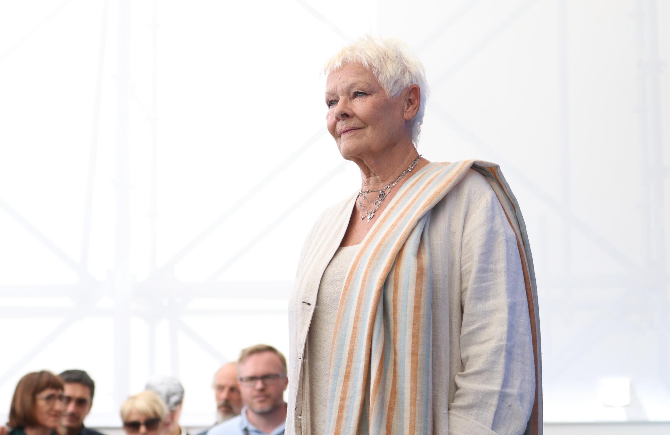 Venezia 2017: uno scatto di Judi Dench al photocall di Vittoria e Abdul