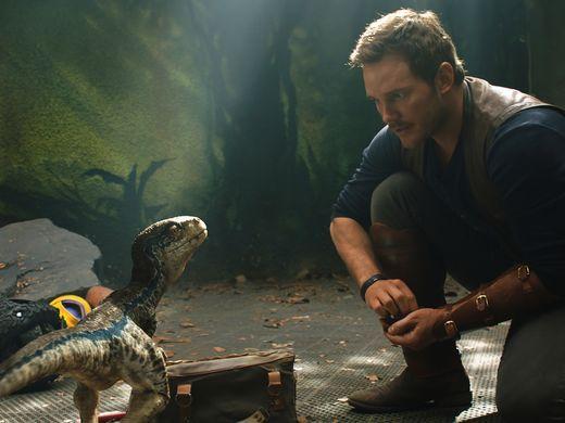 Jurassic World: Fallen Kingdom - Chris Pratt in una scena con ina tartaruga