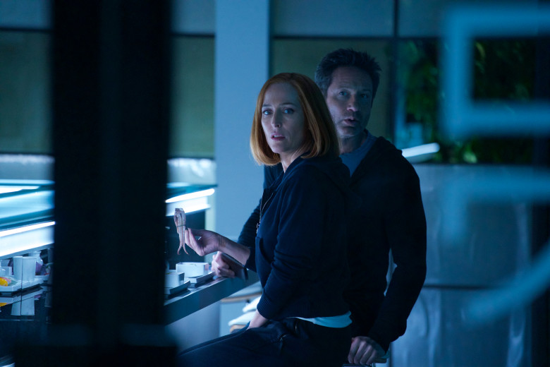 X-Files:  Gillian Anderson e David Duchovny nell'episodio Rm9sbG93ZXJz