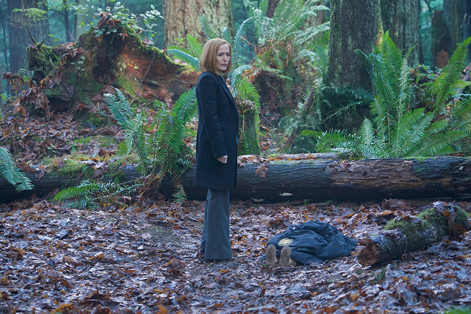 X-Files: una scena con Gillian Anderson, episodio Familiar