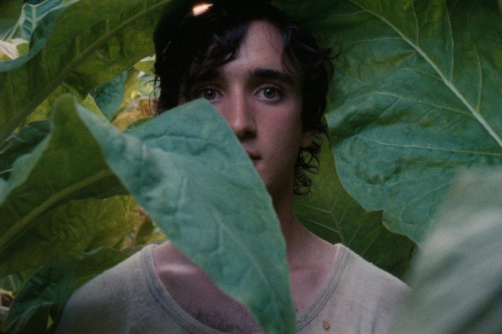 Lazzaro felice: Adriano Tardioli in un'immagine del film
