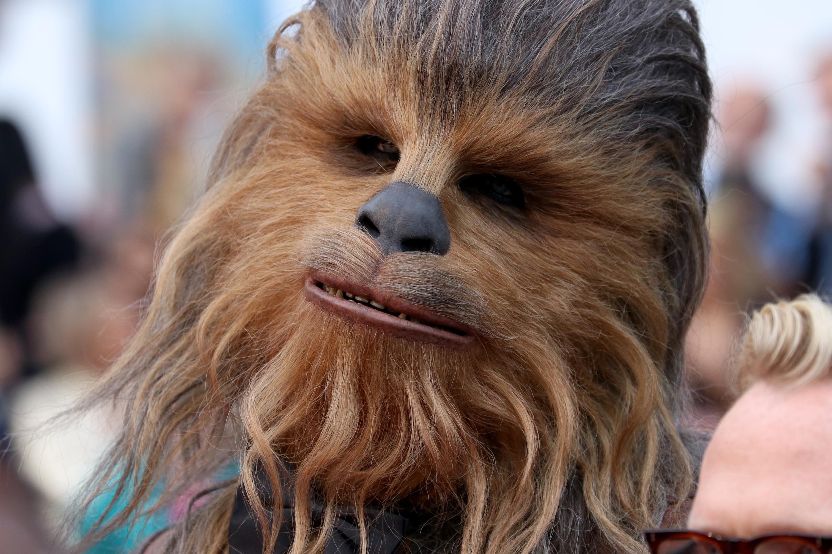 Cannes 2018: un primo piano di Chewbacca sul red carpet di Solo: A Star Wars Story