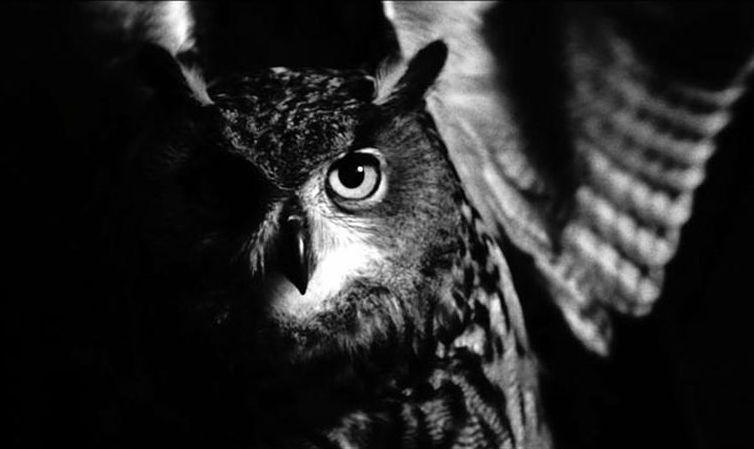 Macbeth - Neo Film Opera: un'immagine del film