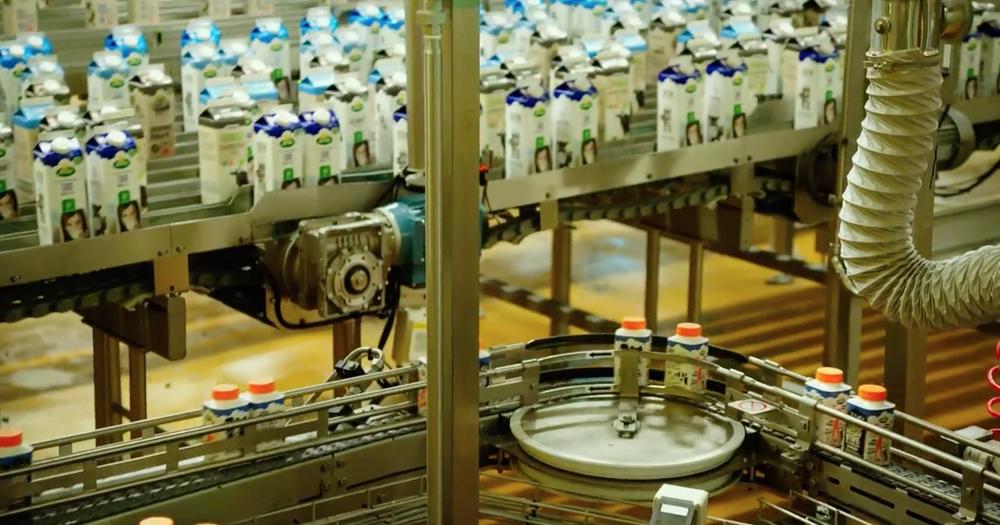 The Milk System: un'immagine tratta dal documentario