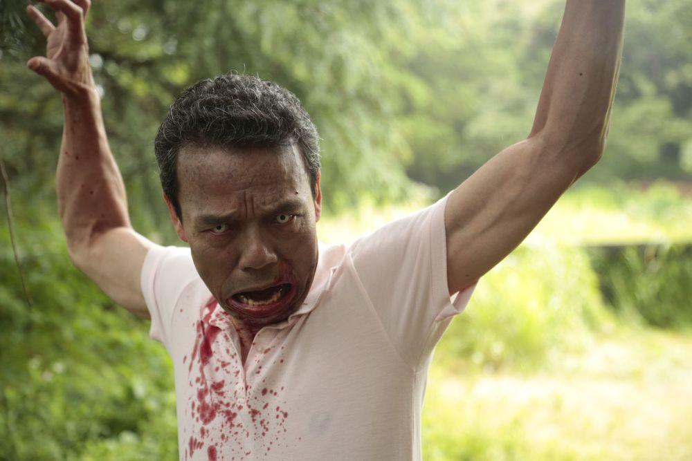 Zombie contro zombie: un'immagine del film