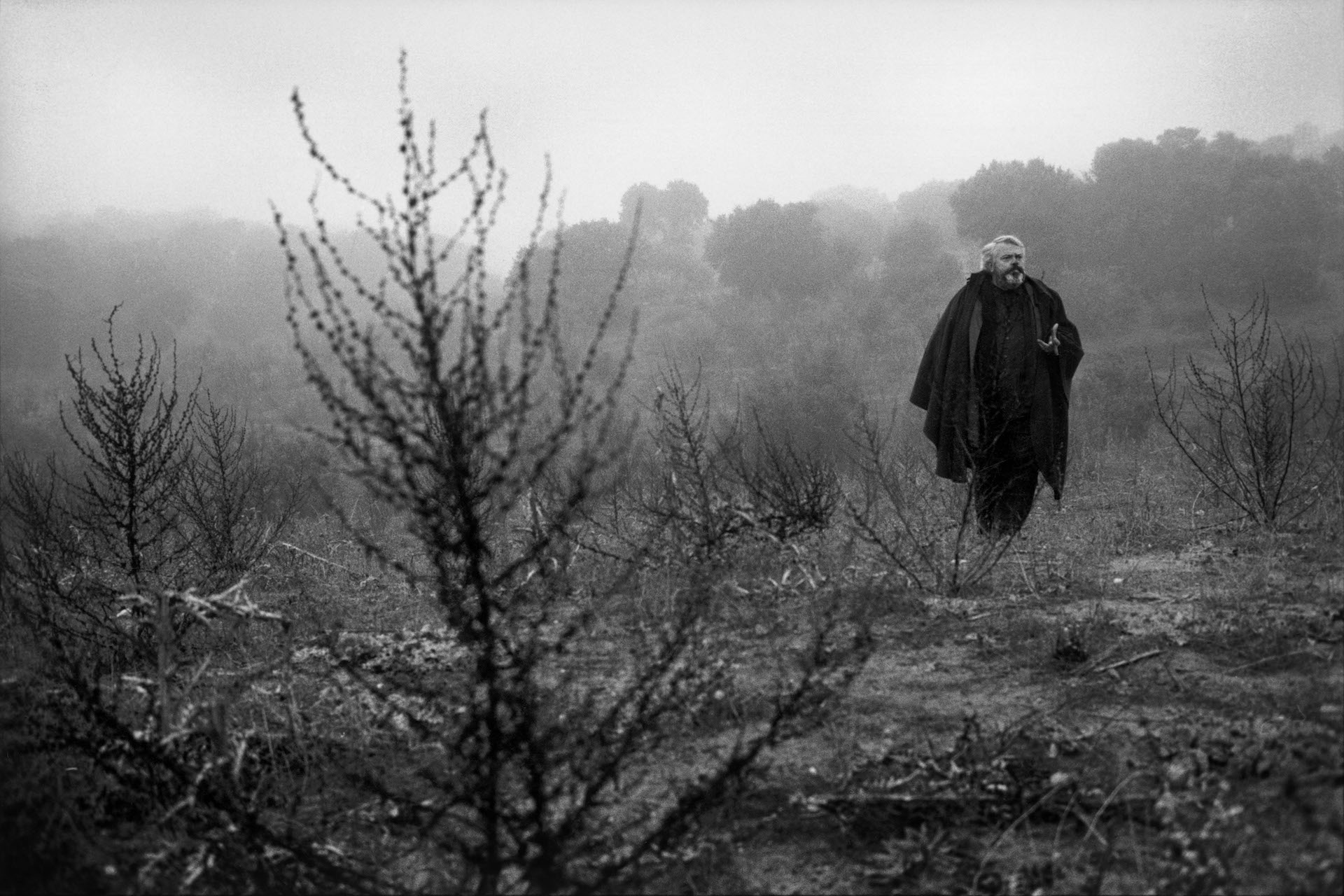 Lo Sguardo di Orson Welles: una sequenza del documenario