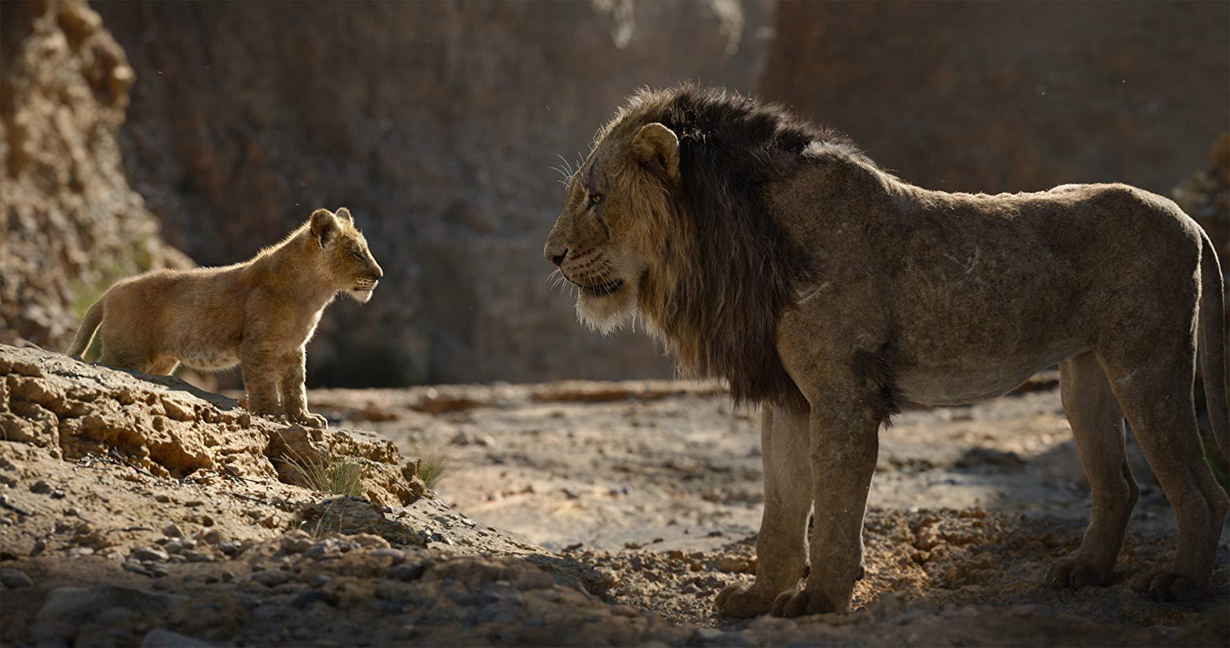 Il Re leone: un'immagine del film