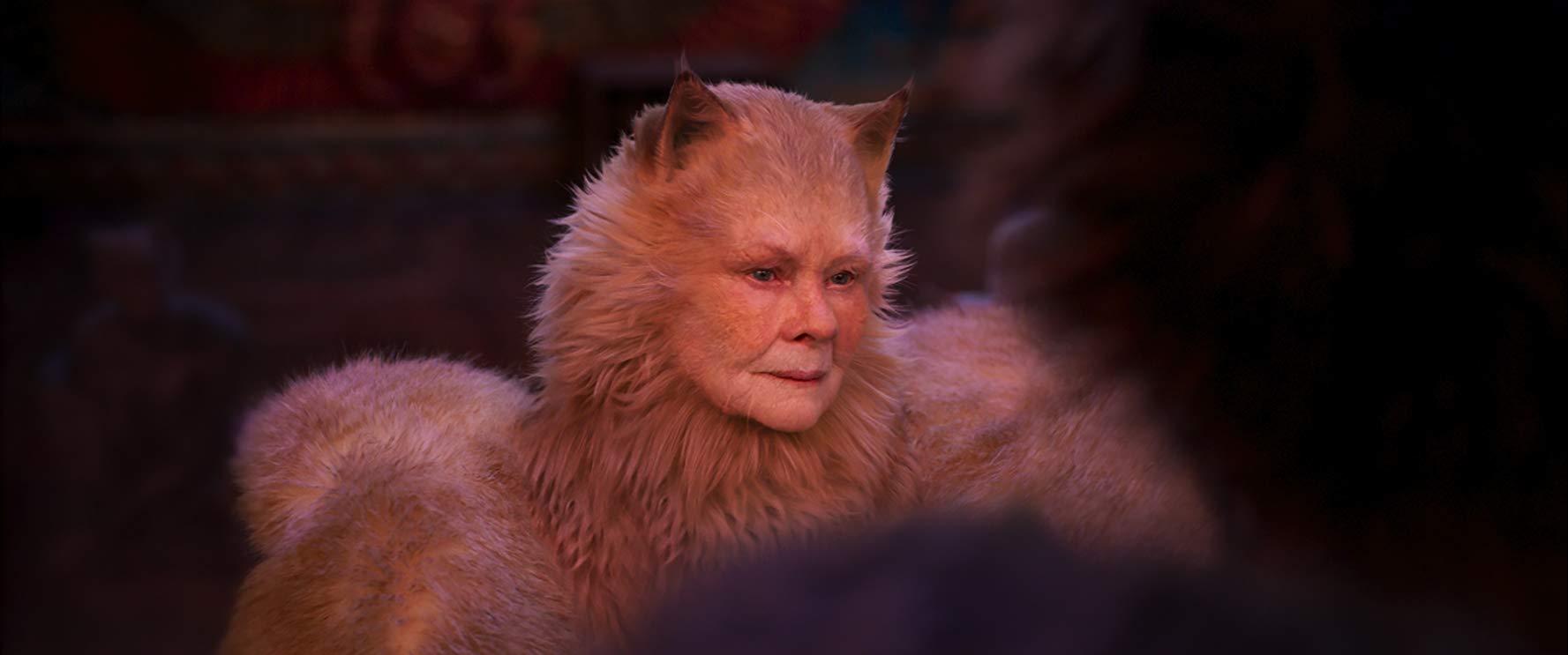Cats: una scena del film con Judi Dench