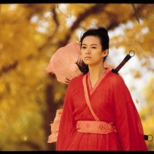 Zhang Ziyi in una scena del film Hero