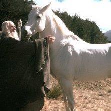 Gandal il Bianco (Ina McKellen) accoglie il destriero Ombromanto