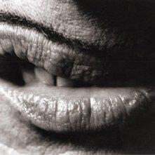 I baffetti di John Waters, suo inconfondibile 'marchio di fabbrica', in uno scatto di Greg Gorman