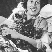 Anna Magnani e i suoi gatti