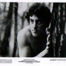 David Naughton in  una foto promozionale per Un lupo mannaro americano a Londra