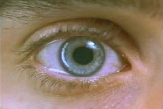 l'occhio di Jared Leto in una scena di Requiem for a Dream
