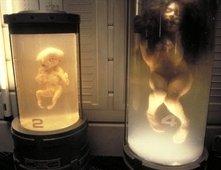 Una scena di Alien: La clonazione