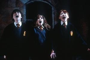 Daniel Radcliffe, Emma Watson e Rupert Grint in una scena di Harry Potter e la pietra filosofale