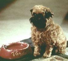 Il cagnolino Verdell in una scena di Qualcosa è cambiato