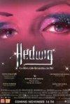 La locandina di Hedwig - La diva con qualcosa in più