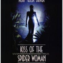 La locandina di Il bacio della donna ragno