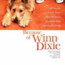 La locandina di Because of Winn-Dixie