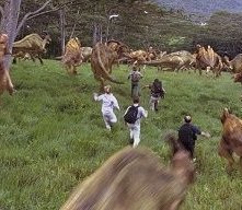 Una scena di Jurassic Park III