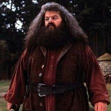 Robbie Coltrane è Rubeus Hagrid