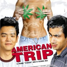 La locandina italiana di American Trip
