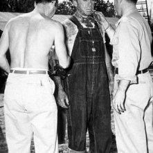 Humphrey Bogart in una scena de Il tesoro della Sierra Madre