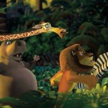 Una scena del film Madagascar