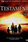La locandina di Testament