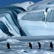 Una scena del documentario La marcia dei pinguini