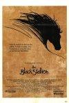 La locandina di Black Stallion