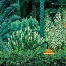 Kirikù e gli animali selvaggi, un'immagine del film d'animazione