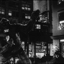Panico in strada in una sequenza di King Kong