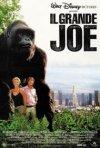 La locandina di Il grande Joe