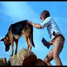 Martin Speer in una scena di LE COLLINE HANNO GLI OCCHI