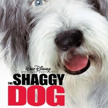 La locandina di The Shaggy Dog