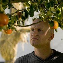 Una scena del film Le mele di Adamo