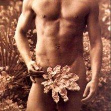 una immagine sexy di Brendan Fraser