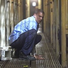 Dominic Purcell in Prison Break