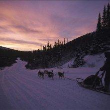 Una scena de Il grande nord