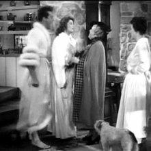 Cary Grant, Katharine Hepburn e May Robson in una scena di SUSANNA