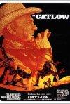 La locandina di Catlow
