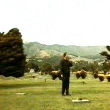 William Hurt in una sequenza di FINO ALLA FINE DEL MONDO
