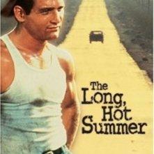 La locandina di La lunga estate calda