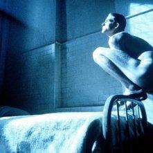 Matthew Modine in una scena di Birdy, le ali della libertà