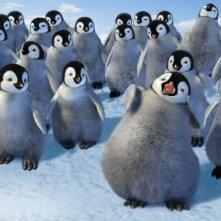 Scena del film Happy Feet (2006)