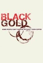 La locandina di Black Gold